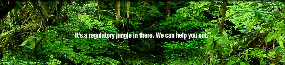 It's a regulatory jungle in there. We can help you out.